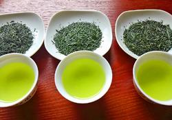 4月お花&お茶edit
