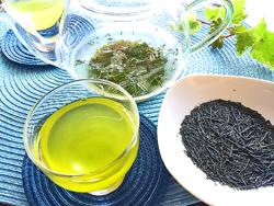 <煎茶講座>日本茶の魅力を再発見!