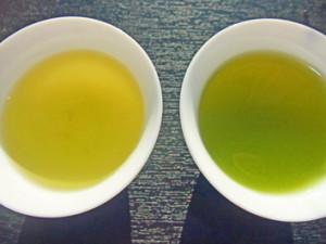 煎茶飲み比べedit