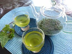 <冷茶講座>日本茶の魅力を再発見